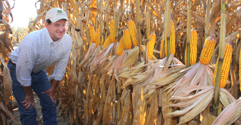 BRIEN HENRY checks high density dryland corn plots at Mississippi State University just prior to harvest The high plant population plots outyielded those in the lsquonormalrsquo density range in both 2013 and 2014