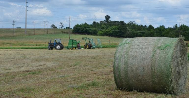 Rain in much of the eastern half of the state has generally been good and many producers have some surplus hay according to Dr Larry Redmon Texas AampM AgriLife Extension Service state forage specialist College Station