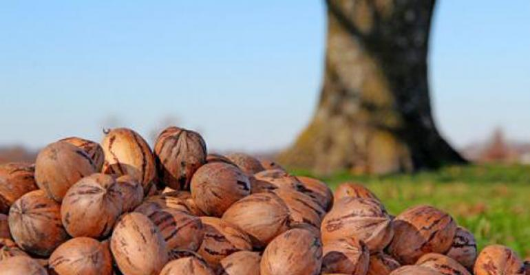 New Mexico pecan specialists see bright future for pecan growers