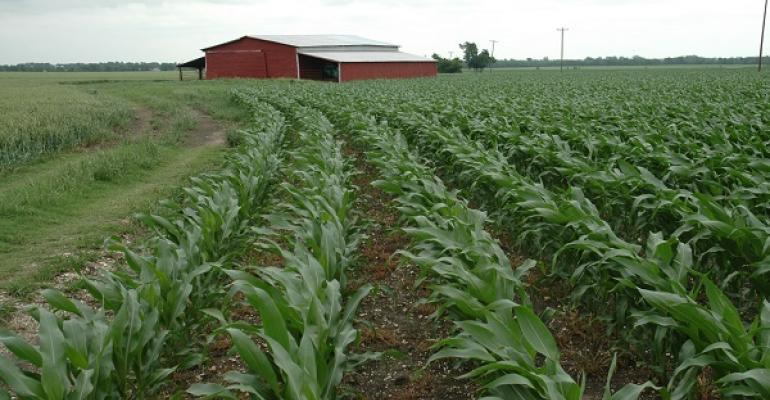 CROPLAND VALUES continue an upward trend even as commodity prices decrease