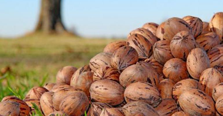 Pecan marketing order could provide much-needed industry support