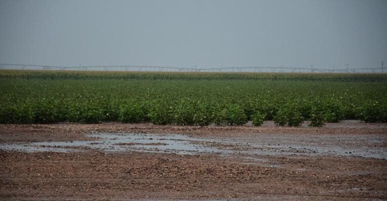 Rainfall has improved conditions across much of the Southwest but drought lingers in some areas