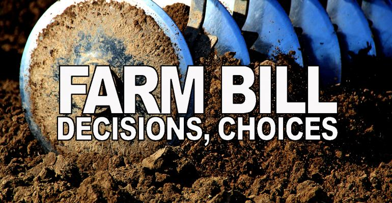 Farm bill update: Decisions with and without web-based decision aid