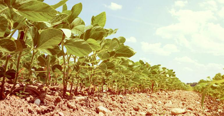Benchmarking farm performance: How to gather ag industry information