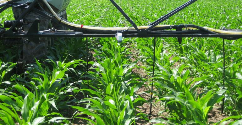 This OptRx canopy sensor uses three light wavelengths to assess crop nitrogen sufficiency and applies the appropriate variable rate of N on the go