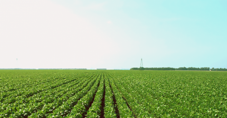 Can South America news support soybean prices?
