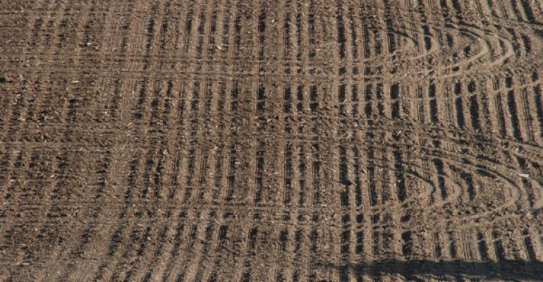 Second chance at higher corn, soybean prices