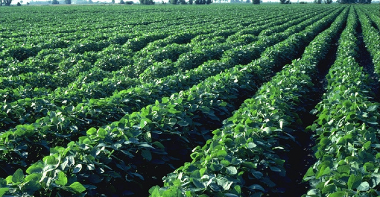 Are the cards stacked against the soybean market?