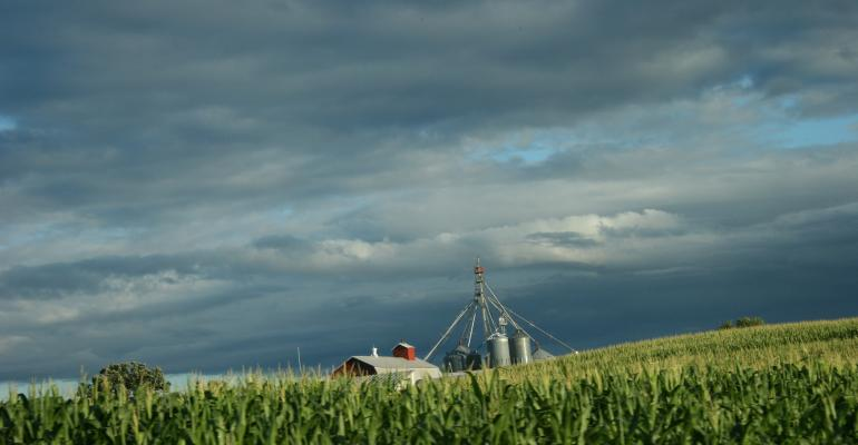 Will on-farm storage be the Achilles heel for corn?