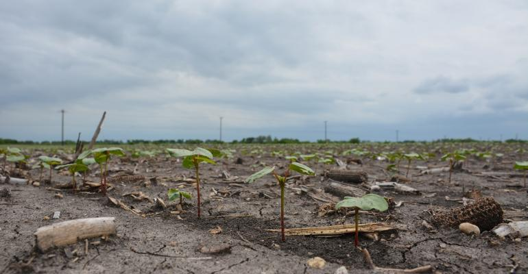 Soil is Earth39s most valuable asset