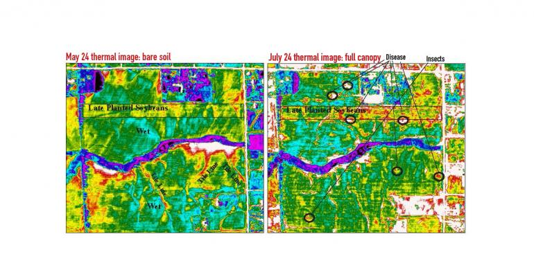 Sutton takes thermal images from the air every 10 days to two weeks throughout the growing season A grassed waterway purplish color and a strip of lateplanted soybeans stood out in a lateMay image of bare soil and a lateJuly image of a full crop canopy The May photo picked up tile lines where the soil above them was relatively drier and warmer and an expanded area of wet soilsThe late July image showed small areas of red and white in a corn field which turned out to be gray leaf spot and other areas with r