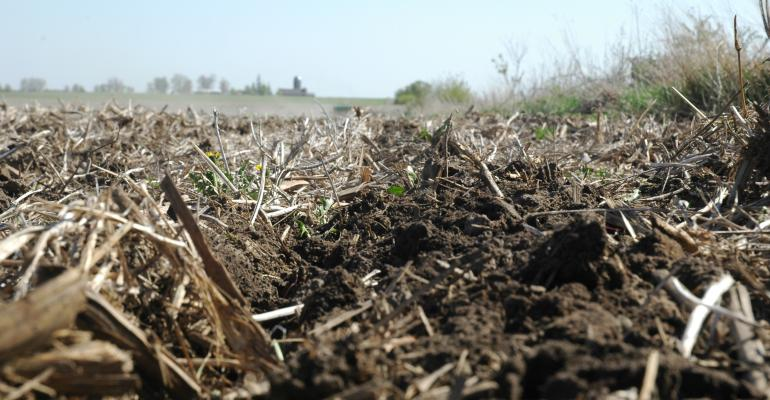 Research shows benefits of strip-till