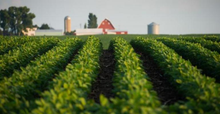 After a rough week for soybeans, is the low price in?