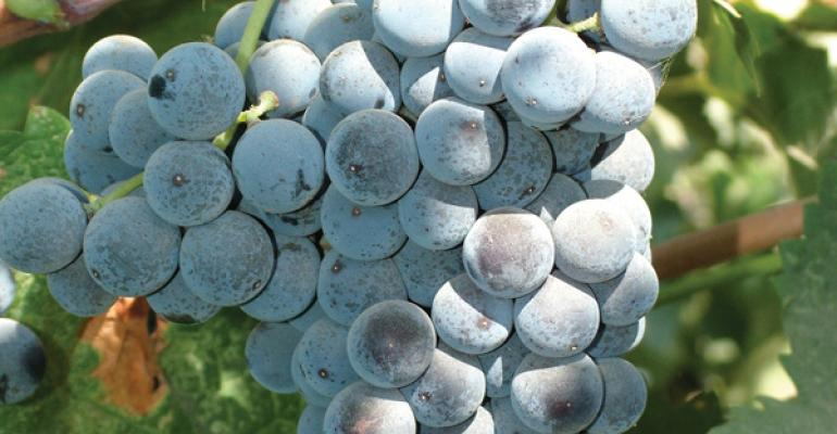 An average to smaller San Joaquin Valley wine grape harvest is followed by continued vineyard removals
