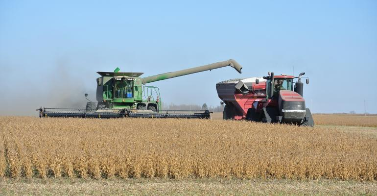 soybean-harvest555