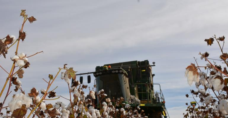 Issues other than production will be on cotton farmers39 minds as they plan for the 2016 crop