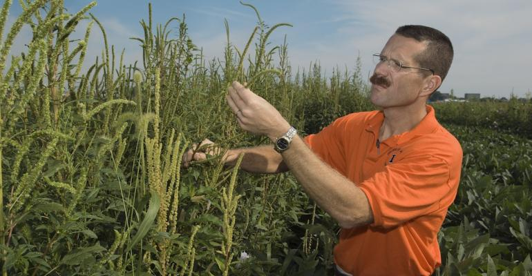 Aaron Hager University of Illinois weed scientist says growers should plan to use more than one effective chemical on problem weeds with each application and not as separate applications over the course of a growing season
