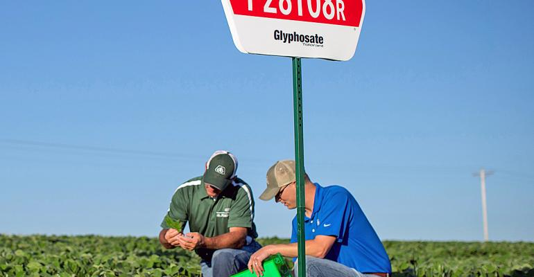 P28T08R is what Pat Arthur soybean product manager DuPont Pioneer calls a quotlocal legendquot Packed with the traits including the offpatent glyposate tolerant or RR1 trait Arthur reports that it is a proven performer with a yield advantage over competitors