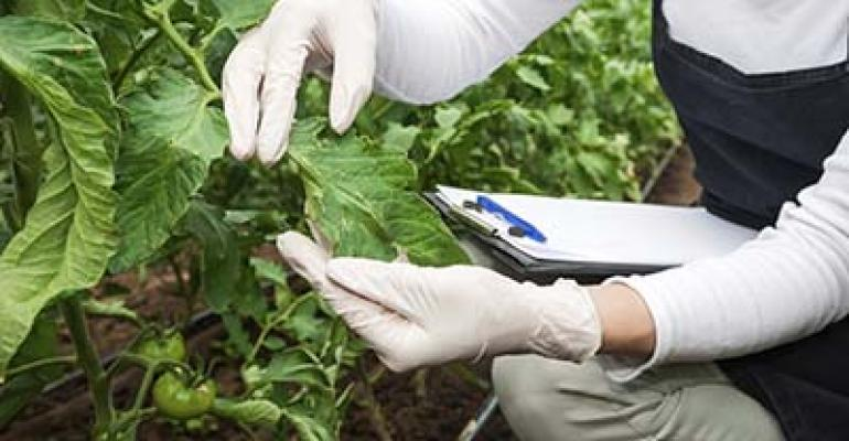 USDA APHIS extends comment period for GMO rule changes