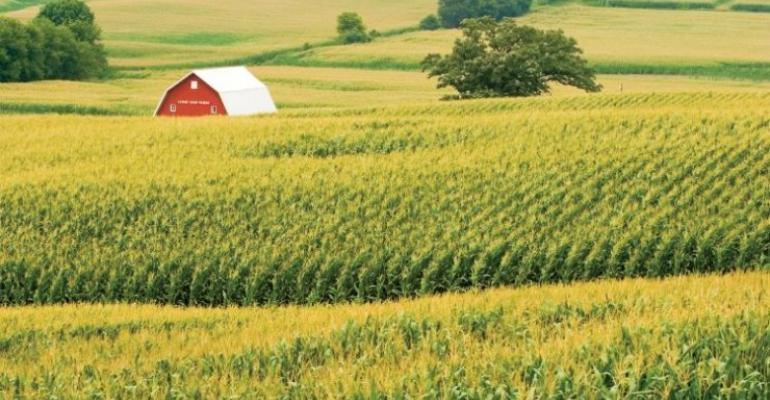 Why the USDA corn acre number makes sense, for now