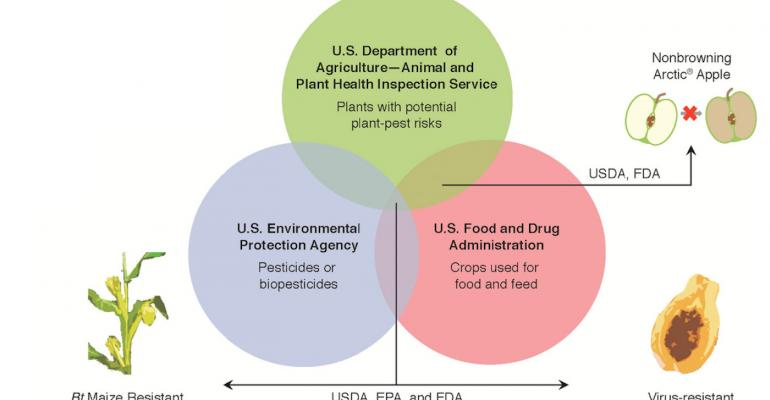 The process for approving genetically enhanced crops involves key US regulatory agencies depending on the technology