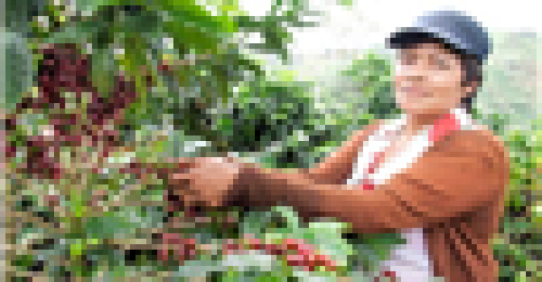 10 things you didn't know about Colombian coffee
