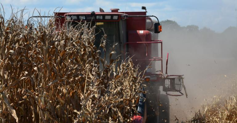 A combine eats its way across a research trial at the University of Tennessee39s West Tennessee Research and Education Center in Jackson
