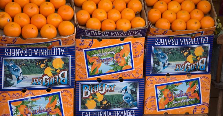 California Navel orange production should be close to last year
