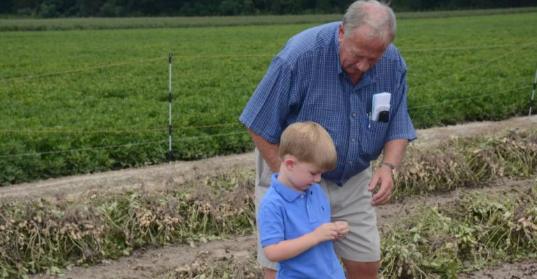 Fouryearold Will Saunders inspects the pod of an experimental peanut line grown on the Peanut Variety and Quality Evaluation PVQE plot on his grandfather Taylor Sladersquos farm in Williamston NC as granddad looks on