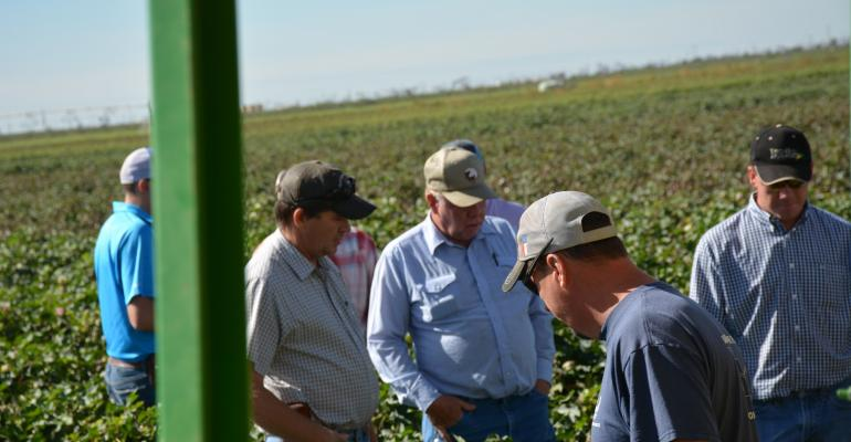 Field day participants check new Deltapine varieties near Seminole Texas