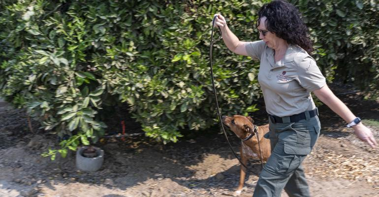 wfp-todd-fitchette-canine-detection-services-14.jpg