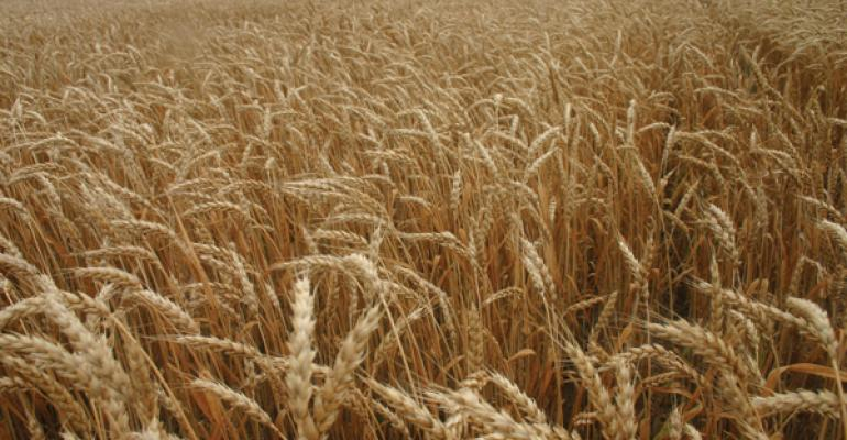 Wheat price trend sideways in a 90-cent range