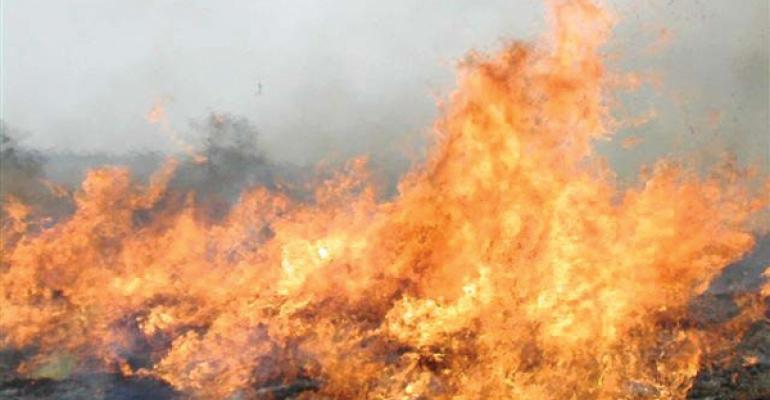 Texas wildfire agricultural losses estimated at $20.4 million