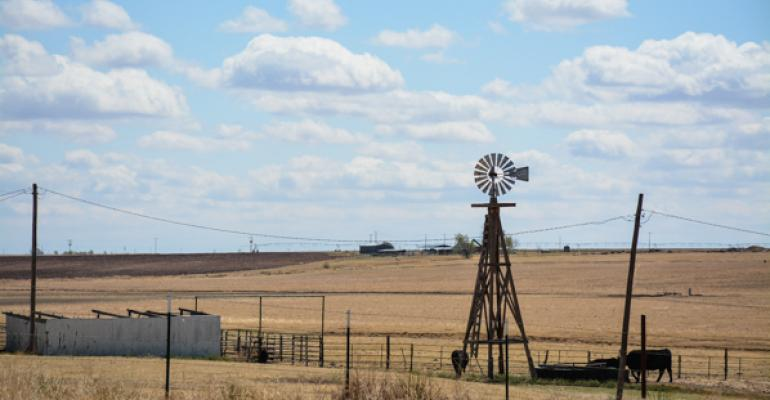 windmill cattle huguley 18