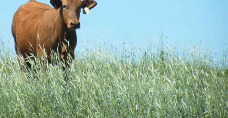 USDA seeks animal disease traceability comments