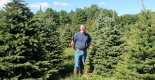 Brian Skeval stands among mature trees at his Whitetail Tree Farm