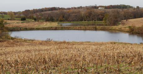 pond in the middle of farm land