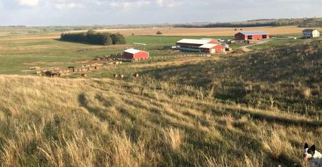 The Severance Farm, Dickey, N.D., as seen from one of the farm's pastures