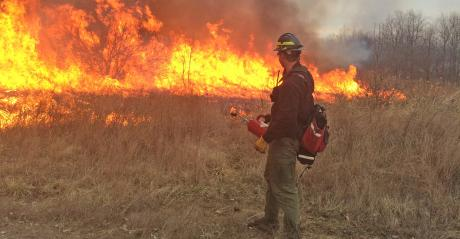 man watches controlled burn