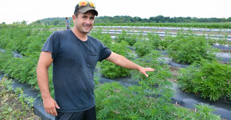 Bryan Harnish points toward hemp on his diversified farm operation in Pequea, Pa.
