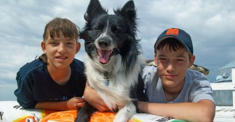 border collie between two kids