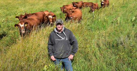 Todd Andresen checks on his herd of Red Angus cattle in Otter Tail County, Minn.