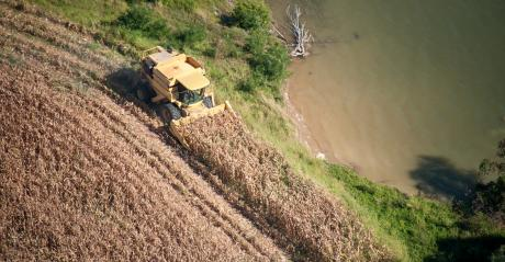 combine harvesting and creating buffer strip
