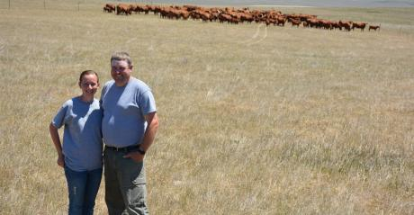 Crystal and Levi Neuharth winners of South Dakota Leopold Conversation Award standing in field with cattle behind them