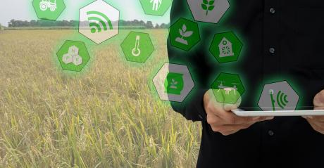 farming with Internet of Things concept
