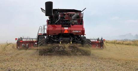 A seed terminator on a combine at work during soybean harvest