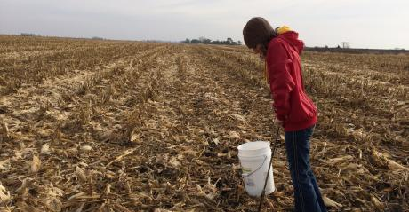 girl in dead corn field taking soil samples