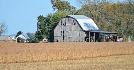 A barn next to a soybean field ready for harvest