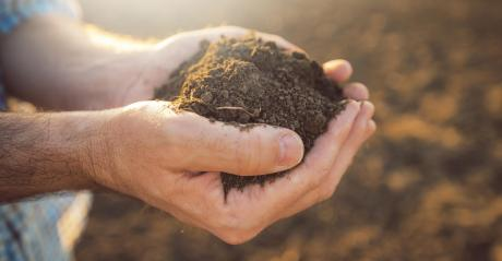Close up of a farmer holding soil in both hands