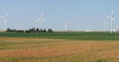 wind turbines i field